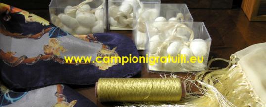 CAMPIONARIO GRATIS Filati Dal Museo Didattico Della Seta Di Como (SOLO DOWNLOAD)