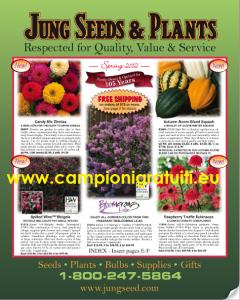 Campione gratuito Cataloghi giardinaggio, piante e fiori vari